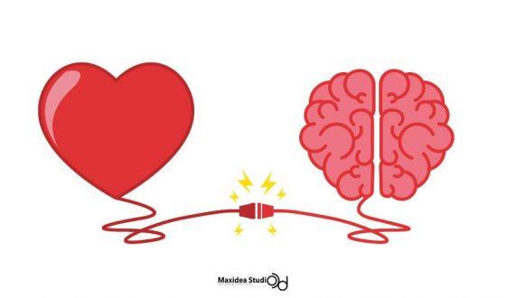 แค่เข้าใจหลักการทำงานของ สมองมนุษย์ เพิ่มอีกนิด ก็ช่วยทำให้คุณขายได้มากขึ้นอีกมหาศาล